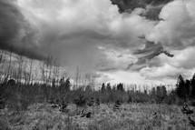 Barren field and dark clouds