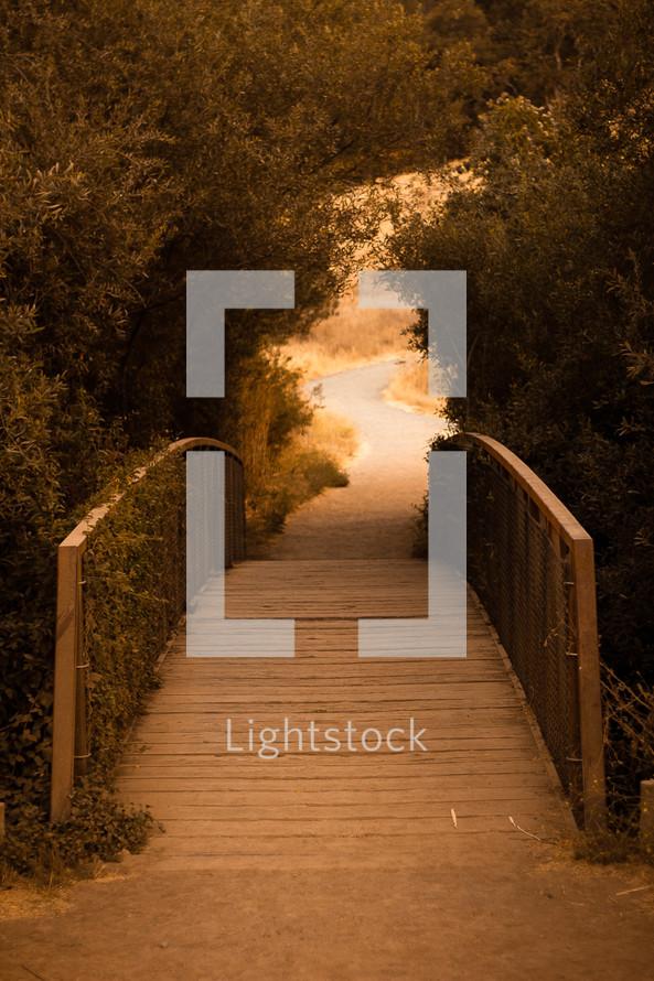 wood walking bridge