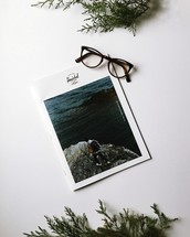 travel guide, reading glasses, book, greenery, white background, travel