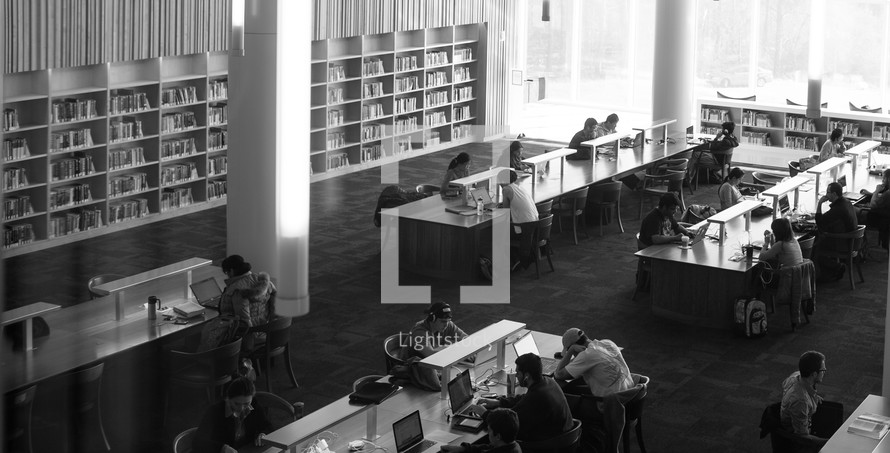 people studying in a library in NC State