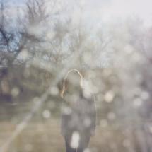 girl looking through evening sunshine - photo taken through dirty car window