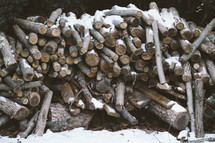 wood pile in snow