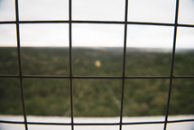 view through a wire fence