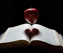 Floating apple creating a heart-shaped shadow on an open Bible.