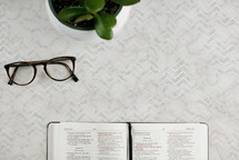 reading glasses, potted plant, and open Bible on a desk