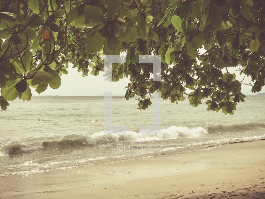 tide washing onto a shore in Punta Leona