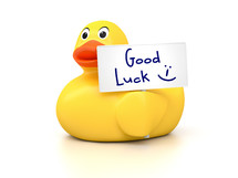 Good Luck rubber ducky