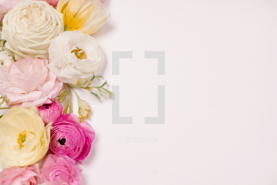 border of flowers on a white background