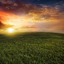 sunlight over a grassy hill