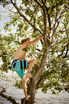man climbing a tree near water