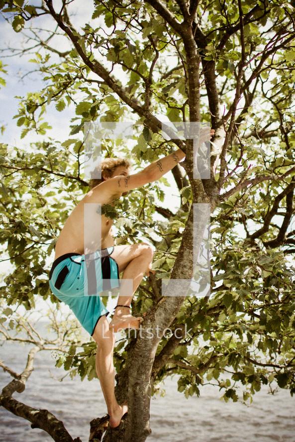 man climbing a tree near water