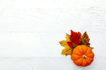 orange pumpkin and fall leaves on white background