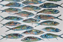 Graphic shoal of fish with big eyes