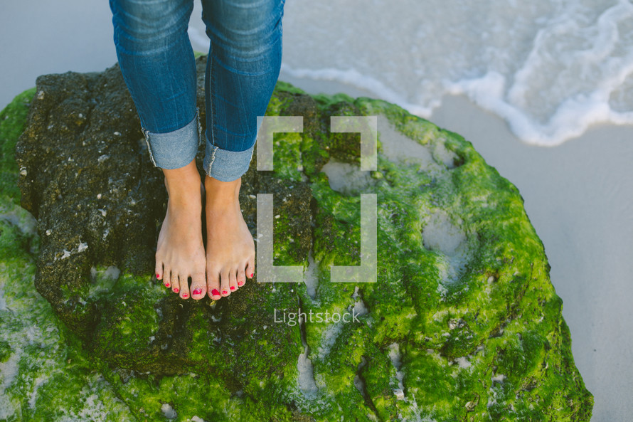 Feet standing on a mossy rock at the beach.
