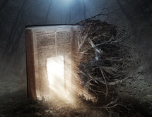glowing doorway on the pages of a Bible