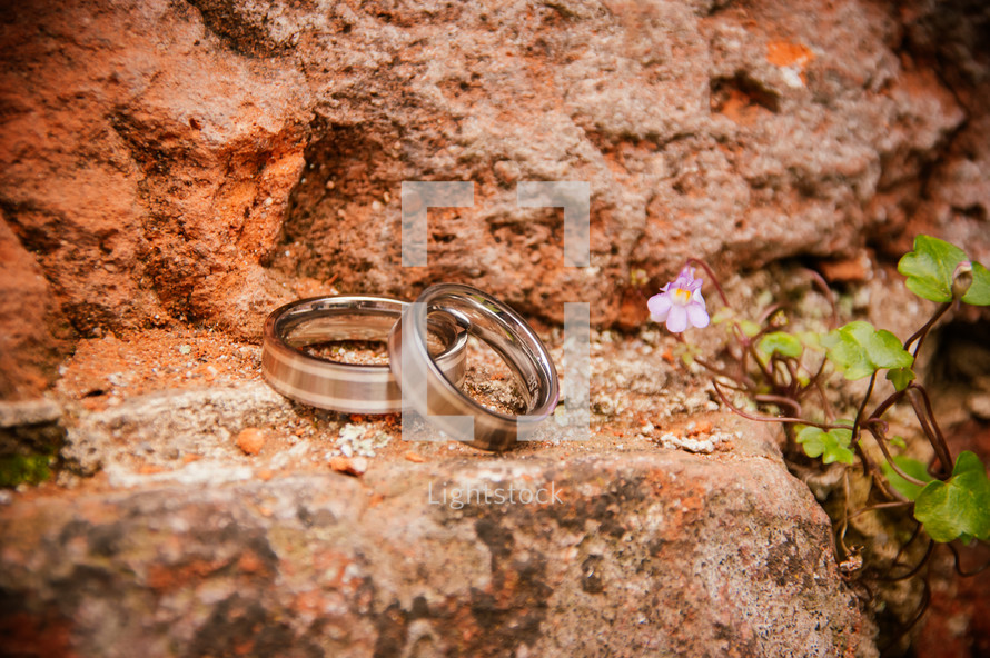 wedding bands on a rock