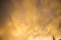building rain clouds