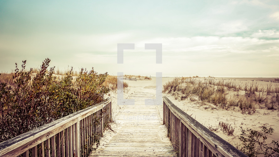 A boardwalk leading through sand dunes to the sea.