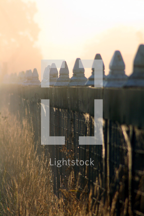 Grass against wrought iron and stone fence at sunsrise.