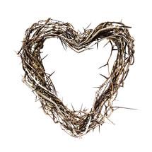 heart shaped thorns
