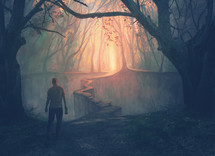 A man in a forest approaches a narrow path to a beautiful opening