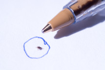 Image illustrating the size of the disease-carrying deer tick relative to a common pen