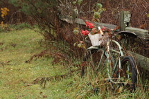 a rusty bicycle leaning against a fence