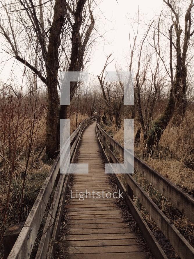 wooden footbridge through a brown winter forest