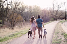 a couple walking their dogs