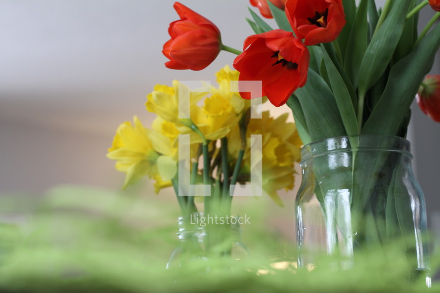 red tulips and yellow daffodils in a vase