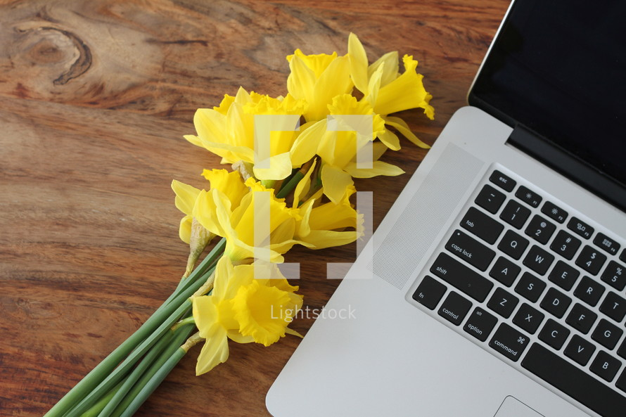 yellow daffodils beside of a laptop computer