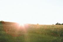 Sunrise on the horizon of a hillside of grass.