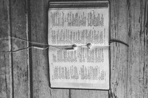 Ear buds on pages of Bible open to Psalm 119 laying on wooden floor.