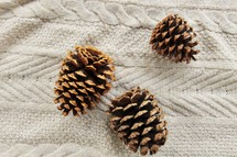 pine cones on a blanket