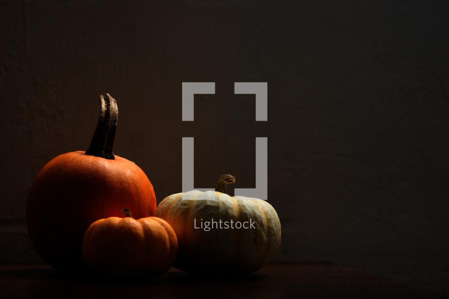 three pumpkins in shadows