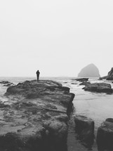 a man standing on a rock on a shore