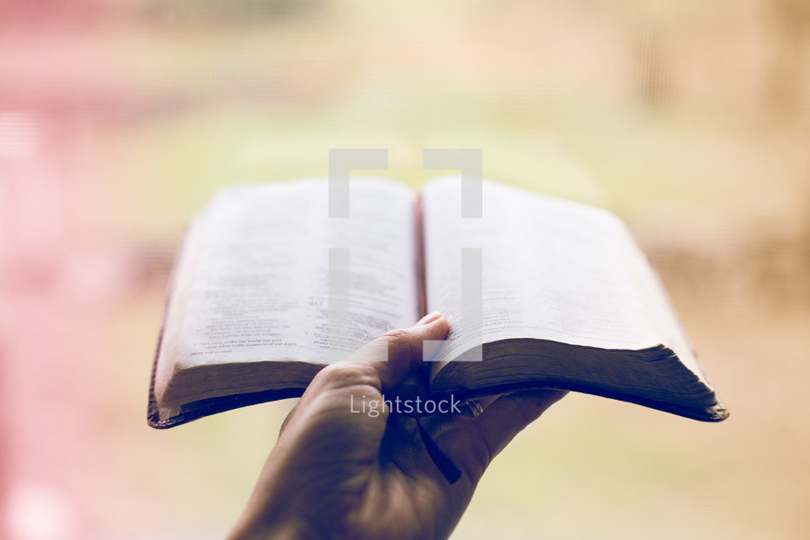 hand holding up a Bible