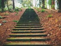 outdoor steps up a steep hill
