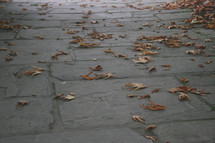 fall leaves on stone pavers