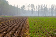 Misty sky over half plowed, half sown field
