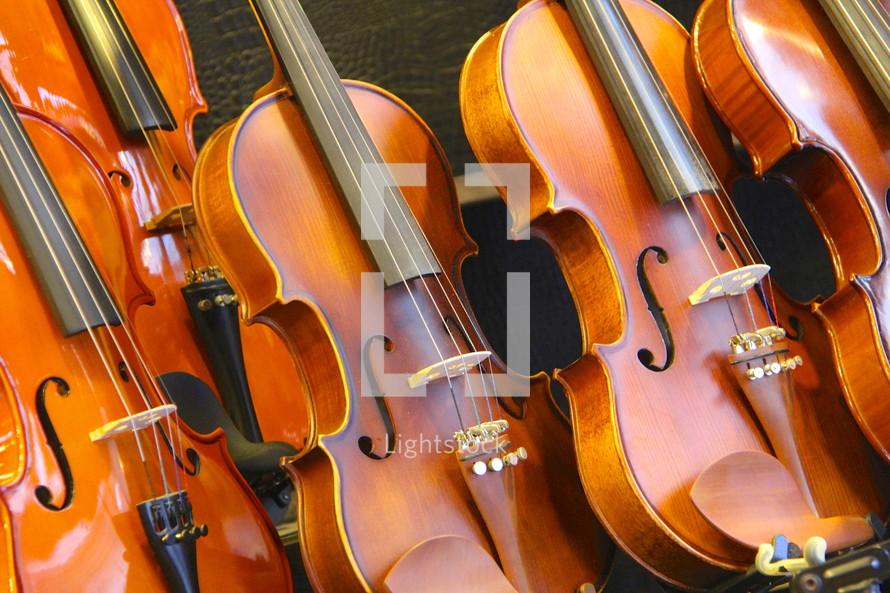 Row of violins