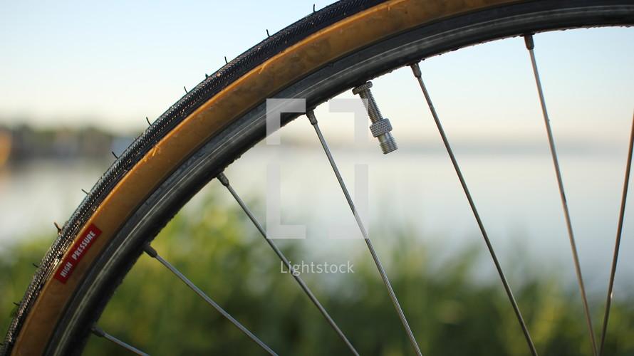 spokes on a bike wheel