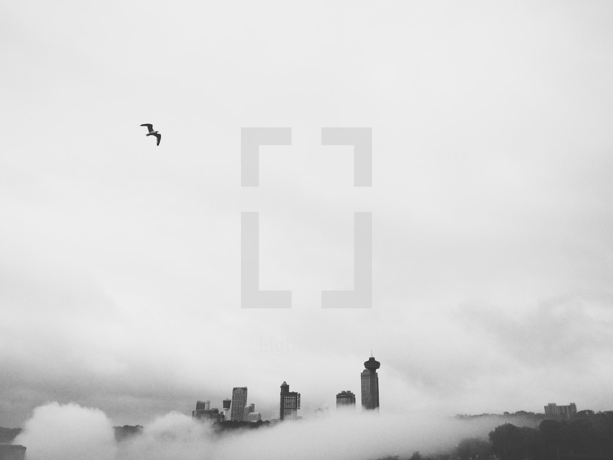 fog in a city and skyscrapers