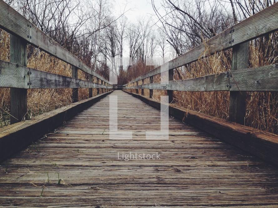 wooden bridge through a brown winter forest