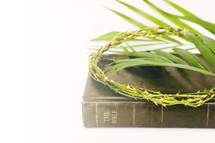 Bible, crown of thorns and palm fronds