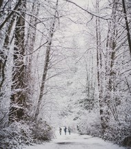 people walking on a snow covered road