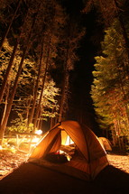 a tent in a forest at night