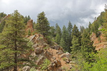 Trees in a valley of rocky hills.