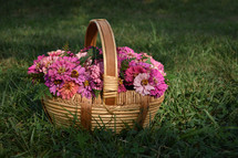 a basket of pink flowers
