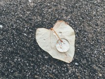 water droplet on a heart shaped leaf on asphalt
